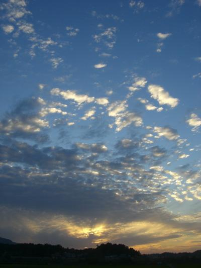 九頭竜川からの夕日